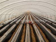 临汾古县哪个生产厂的滴灌管带质量好点