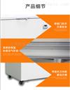 膠水冷凍試驗超低溫保存箱