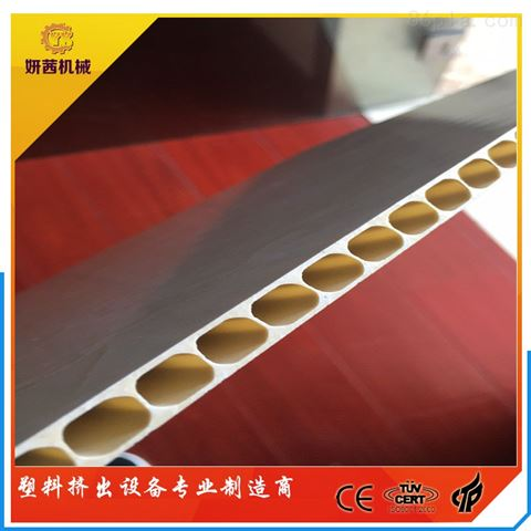 PVC微晶石塑集成墙板生产线设备
