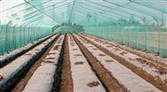 聚乙烯:浅谈塑料农膜需求的季节性影响因素